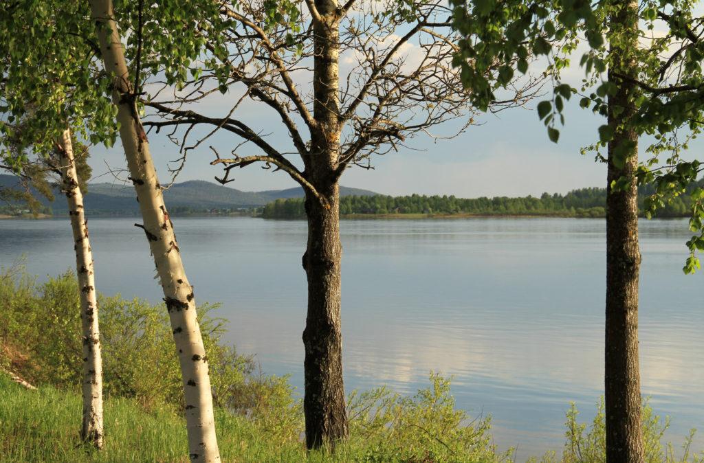 Tornionjokilaakso